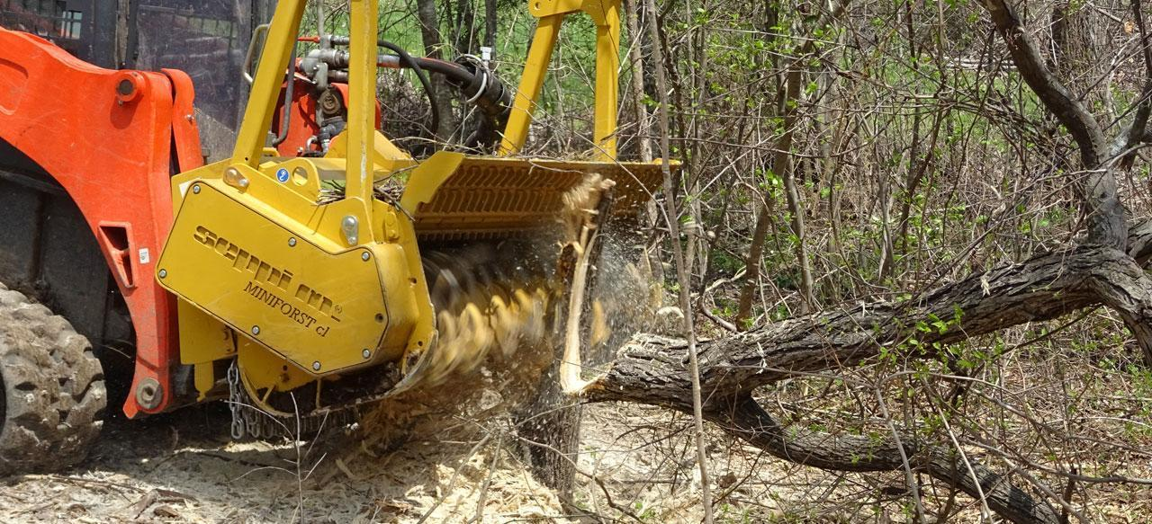 mulching brush and trees